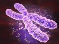Хромосомные аномалии у новорожденных