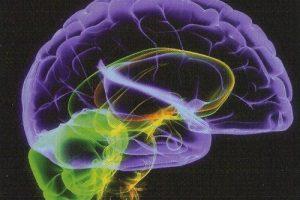 Болезнь Альцгеймера, причины