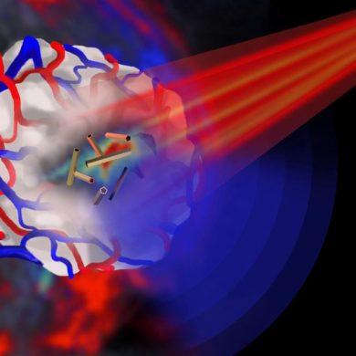 Лазеры отслеживают поведение нанотрубок в живых клетках