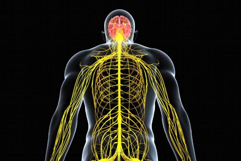 Неврология и лазерная терапия