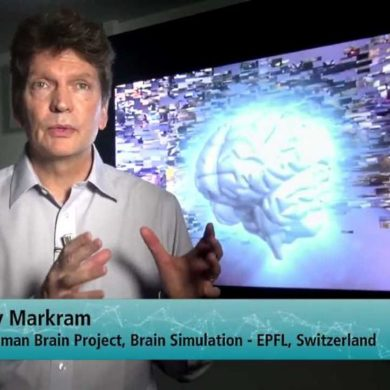 "Проект ""Blue Brain"""