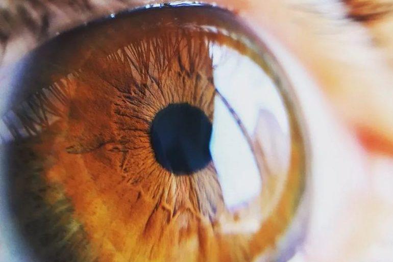 Стволовые клетки помогают заживлению роговицы глаза
