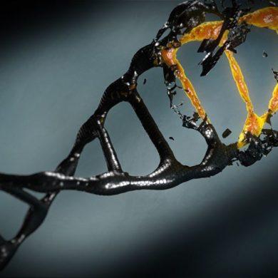 Бедность оставляет след в наших генах