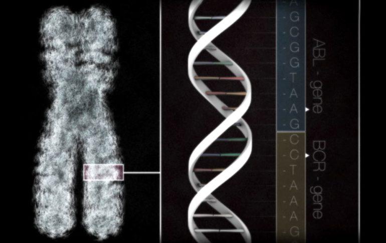 Новое лекарство, нацеленное на лечение нескольких типов рака