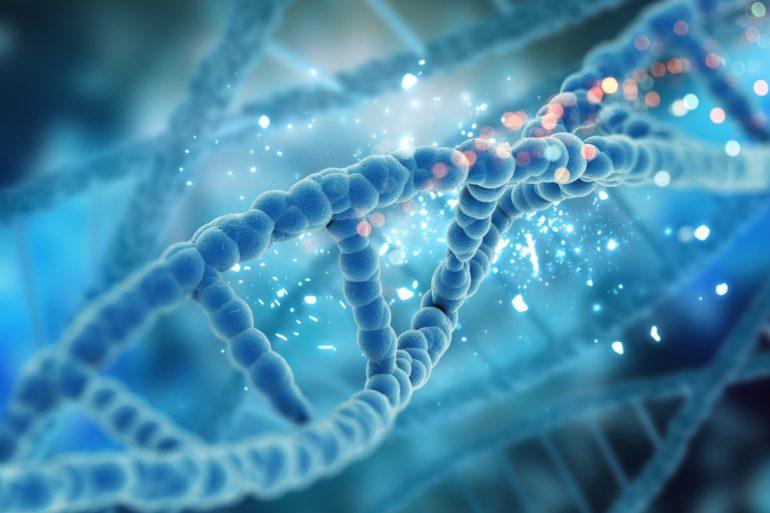 Как лекарство от рака, подавляет репарацию ДНК в раковых клетках