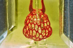 Биопечать органов - новый прорыв