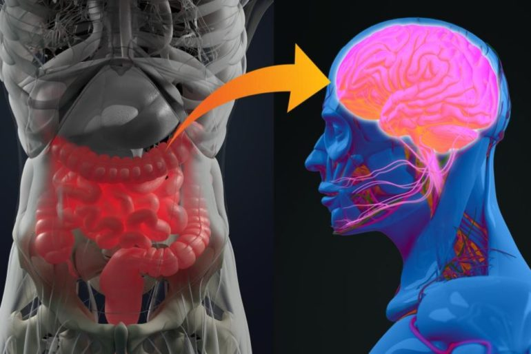 Исследования подтверждают связь кишечника и мозга при аутизме