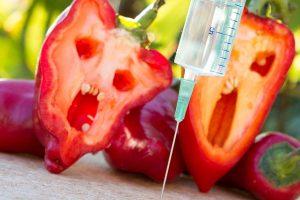 Стали бы вы есть генетически модифицированную пищу, если бы знали, что за ней стоит наука?