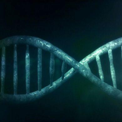 Новые гены из ничего