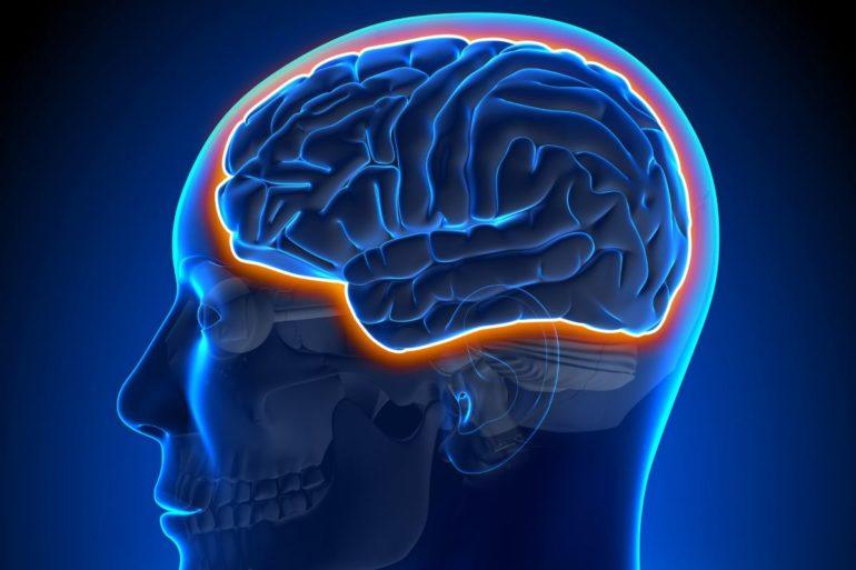 Ультразвуковой метод восстановления дофаминергического пути в головном мозге на ранних стадиях болезни Паркинсона