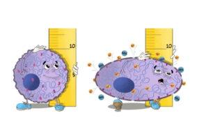 Как раковые клетки покидают переполненные опухоли