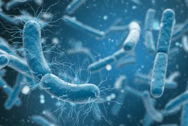 Новый класс антибиотиков, активных против широкого спектра бактерий