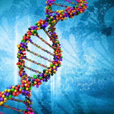 Эволюция - причина высокого риска развития рака у людей